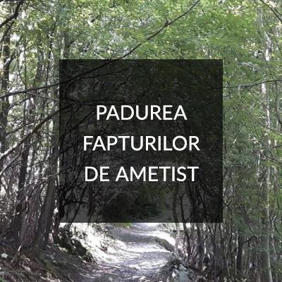 Padurea Fapturilor de Ametist